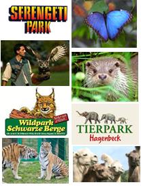 Tierparks©Serengeti Park Welt-Vogelpark Walsrode Wildpark Schwarze Berge Wildpark Lüneburger Heide Alaris Schmetterlingspark Otterzentrum Hagenbeck's Tierpark Kameloase